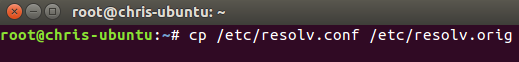 linux%20dns%20setup%20via%20terminal%20copy%20resolv%20file.png