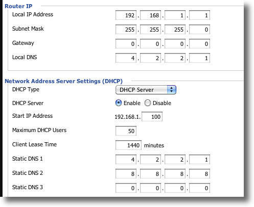 DDWRT Basic DNS Settings